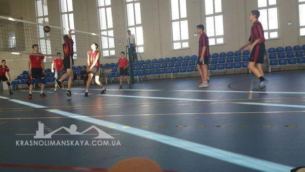 Волейбол г.Родинское