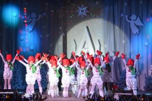 Звезда Рождества (Фото 11)